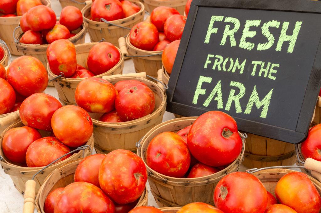 Top 5 Philadelphia Farmers' Markets with Delicious Food Trucks